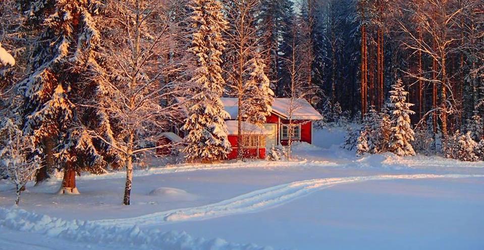 LomaLeivon mökit ja Röykkälän lammastila